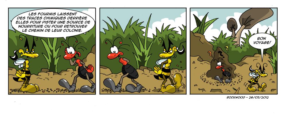 [strips BD] Guêpe-Ride! Img221bminicouleur-3546cab