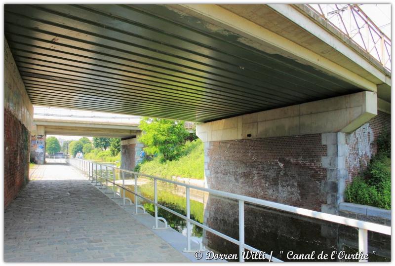 dpp_canal---0015-3522972.jpg