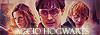 Accio Hogwarts [Confirmación] Normal 100x35-34cb6c1